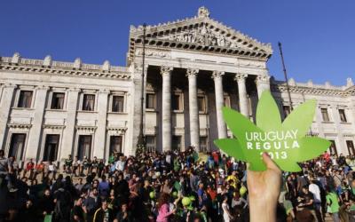 Die Legalisierung in Uruguay. 4 Jahre nach dem Rausch.