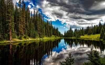 Cannabis in Alaska. Gesetze, Regeln und Gepflogenheiten.