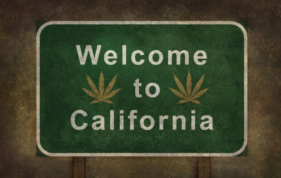 GreenTours Airport Pick Up in Los Angeles / Kalifornien