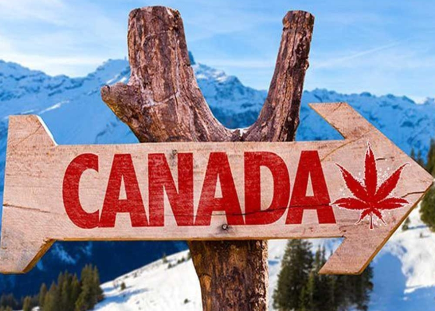Kanada legalisiert Weed und geht steil. Wir gehen mit.